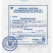 Легализация документов в МинЮсте фото