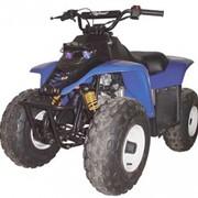Квадроцикл утилитарный Kazuma Dingo 150 фото