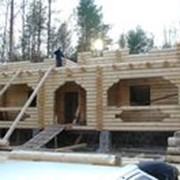 Дома срубы деревянные. фото