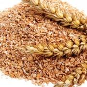 Отруби пшеничные,пушистые насыпью фото
