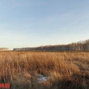 Услуги при покупке - продаже земельных участков в Сибири фото