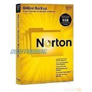 Прогрраммное обеспичение NORTON Online Backup 2.0 5GB In 1 User (20097640) фото