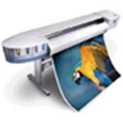 Принтер Xerox 8142 фото