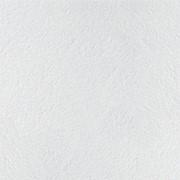 Потолочная плита Retail board 600х600х12 мм гладкая BP3680M3Bх Категория А фото