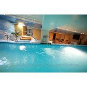 Фінська сауна з басейном фото