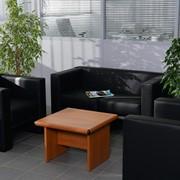 Офисный диван Time фото