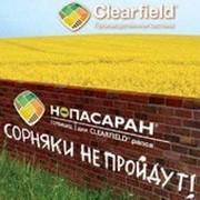 Гербицид НОПАСАРАН, КС (375+25 г/л)+ДАШ фото