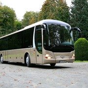 Автобус междугородный MAN Lion's Regio фото