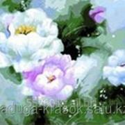 Картина по номерам на холсте - КРАСОТА ПИОНОВ фото