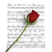 Фотокартина Троянда на нотах код КН-046 фото