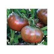 Томат Cherokee Purple (Фиолетовый Чероки). Фермерская упаковка.( 100 шт. семян). фото