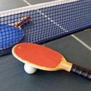 Настольный тенис фото