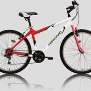 Велосипед Forward KATANA 101 фото