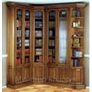 Мебель для библиотек фото