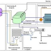 Внедрение технологии утилизации свиного навоза с последующим производством электрической энергии фото