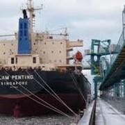 Уголь каменный. Антрацит в порту Измаил. Посреднические услуги в порту Измаил по покупке продаже угля