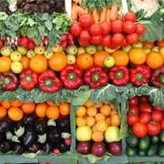 Выращивание овощей, фруктов фото