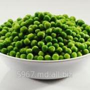 Зеленый горошек фото