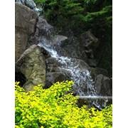 Устройство садовых водопадов фото
