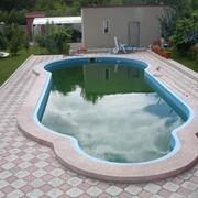 Бассейн необычной формы от CADOVA IMPEX фото