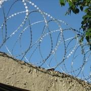 Спиральный барьер безопасности оцинкованный (АКЛ)  фото