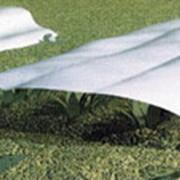 Укрывной материал для растений Агротекс фото