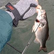 Перчатки для рыбаков фото