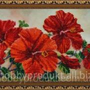 """Набор для вышивания бисером """"Китайская роза"""" P-122 фото"""