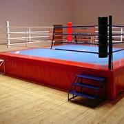Ринги боксёрские фото