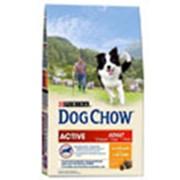 Корм для собак Dog Chow Active для взрослых активных собак фото