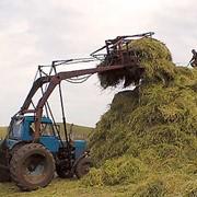 Заготовка сена фото