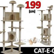 Когтеточка домик игровой комплекс для кота дряпка E-05 фото