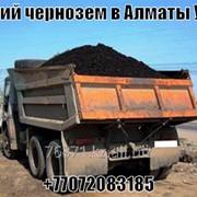 Чернозем с доставкой фото