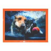 Деревянная рамка 10х15 фотоальт, оранж модель lc 029-26