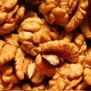 Грецкие орехи фото