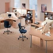 Офис Линия омега фото