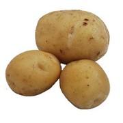 Среднепоздний картофель фото