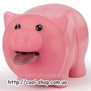 Копилка Жующая Свинка фото