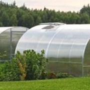 Теплица Сибирская 40Ц-0,5, 4метра, из замкнутого профиля 40*20, шаг 0,5 м + форточка Автоинтеллект фото
