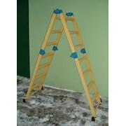Лестница-трансформер (лестница-стремянка-подмость) стеклопластиковая ЛСПТД-П фото