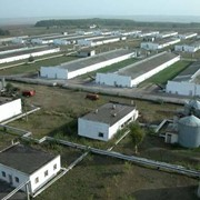 Разработка и внедрение биоэнергетических технологий в сельском хозяйстве фото