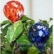 Шары для полива растений Аква Глоб -Aqua Globes фото