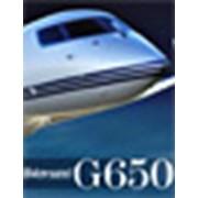 Самолет G650 фото