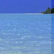 Активный отдых на воде. Гостиница АВОКАДО. Херсонская область фото