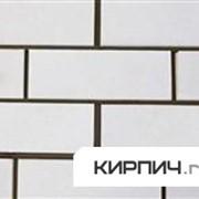 Силикатный облицовочный кирпич полнотелый полуторный белый гладкий КЗСК фото