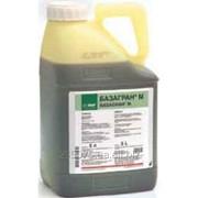 Гербицид Базагран-М 37,5% 5 л фото