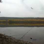 Организую рыбалку. фото