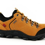 Ботинки мужские спортивные Wishot 22-025-D-CA фото