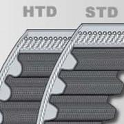 Зубчатый ремень ContiTech Synchroline HTD 8М, ширина 15мм для автоматических дверей. фото