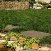 Обслуживание созданных садов фото